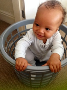 The laundryboy