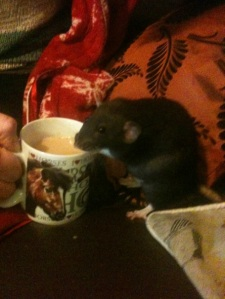 Priya enjoying her morning cuppa Tea.