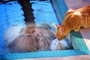 Reuben pool