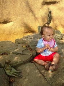 Zoo baby 5