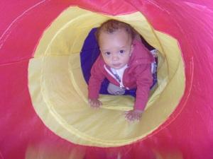 Nursery tunnel 1