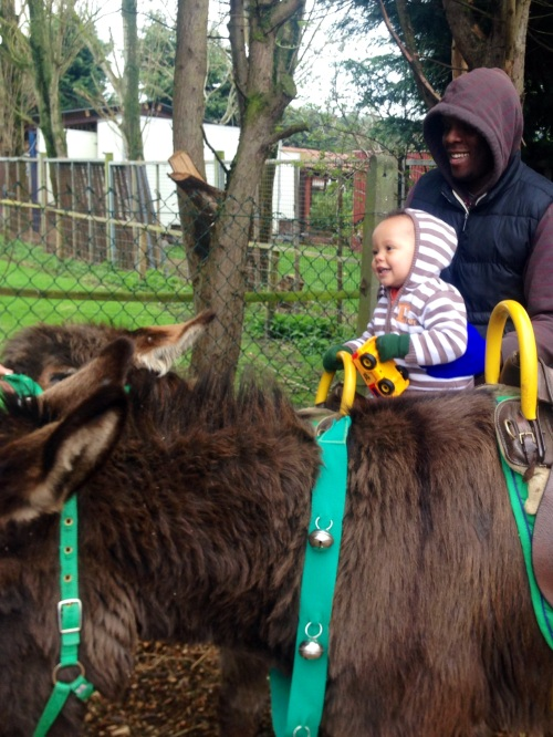 Reuben's First Donkey Ride.