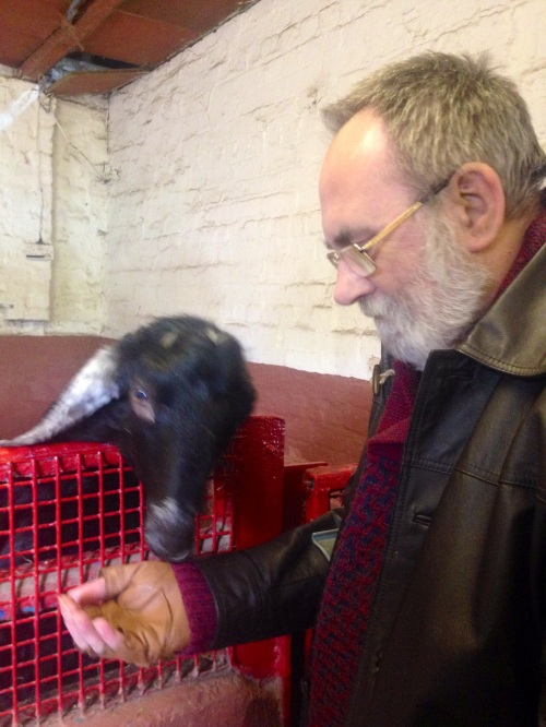 Pops is Capricorn so he gets to feed the goat.