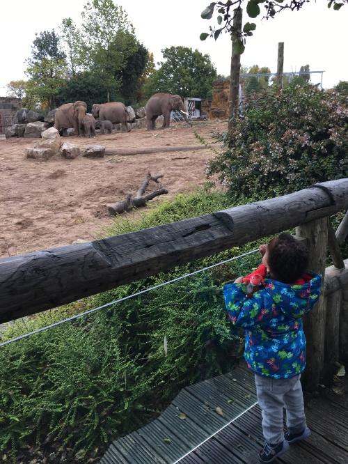 Reuben on safari