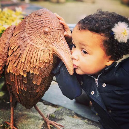 bird love 1